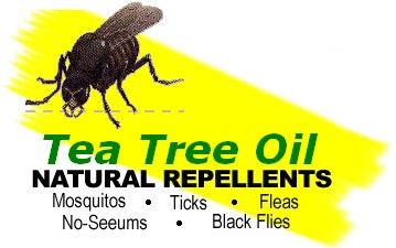 tea tree oil insect repellent