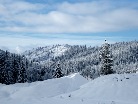Siskiyou County Winter